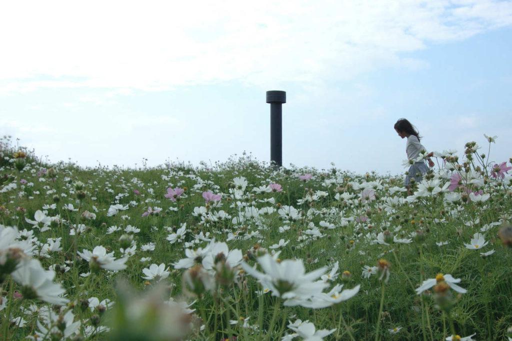 Foto: Hiroshi Nakamura & NAP