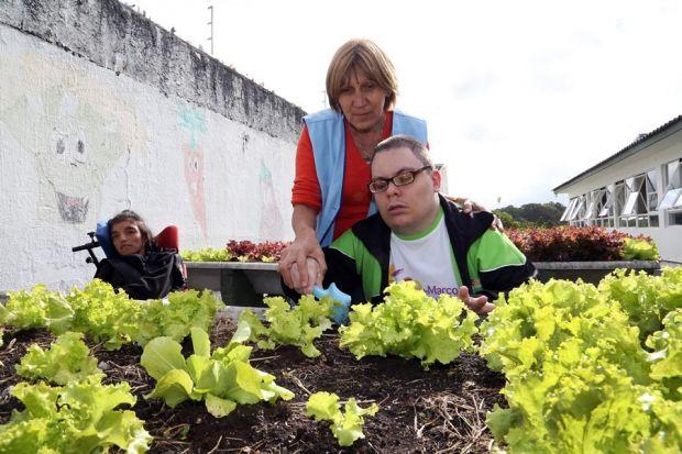 Escola em Curitiba usa hortas para terapia com alunos especiais