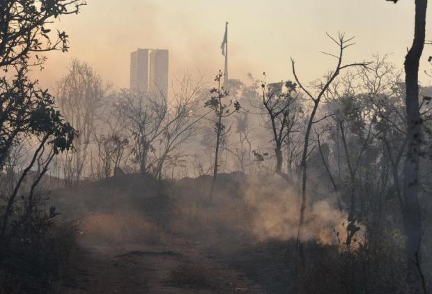 Ministério do Meio Ambiente divulga lista das cidades que mais desmataram o Cerrado