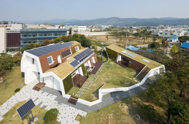 50514bda28ba0d16aa000063_e-green-home-unsangdong-architects_sergio_greensangdong_329_tree