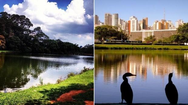 IMG_3843-parque-ibirapuera-ana-paula-fernandes-ciclovivo
