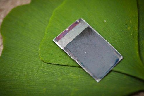 artificial-leaf.jpg.492x0_q85_crop-smart