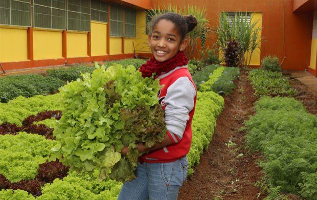 cidades-sem-fome-plante-saude-nas-escolas-207206