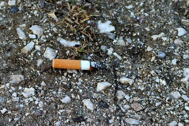 cigarette-butt-238161_640