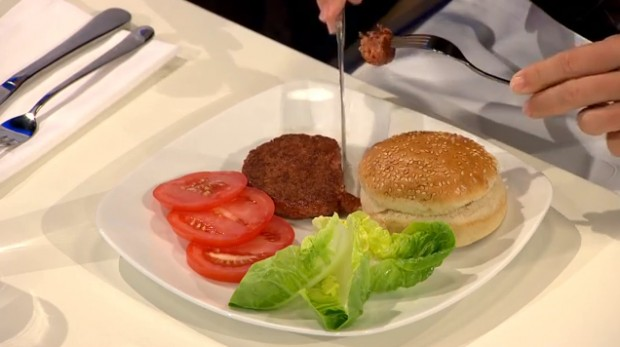 hamburguer-in-vitro-meat-ciclovivo