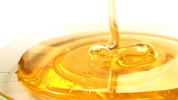honey-sxc-1068457_87651157
