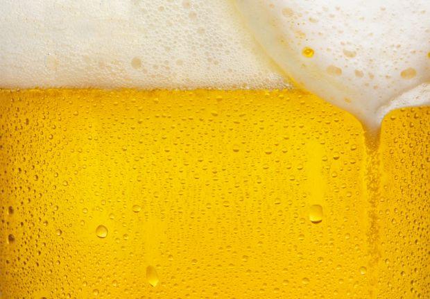 155 litros de água para 1 litro de cerveja