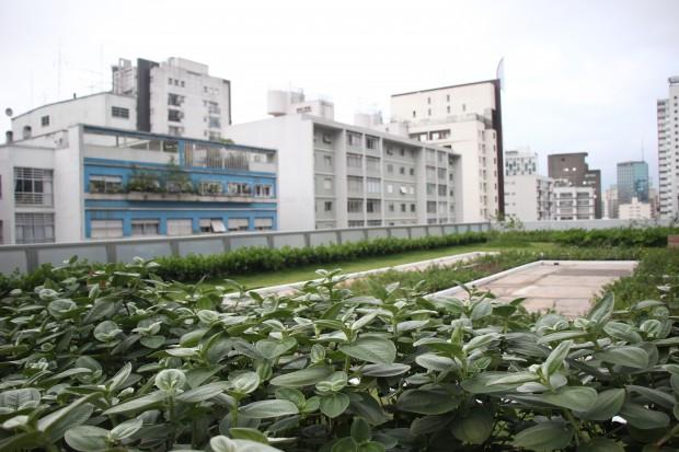 jardimgazeta