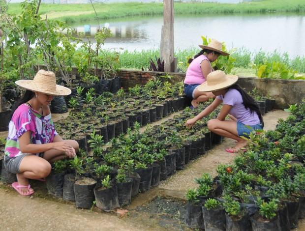 jardinagem-recupera-detentas-no-Acre