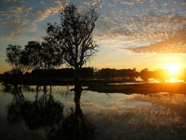 kakadu-australia-ciclo