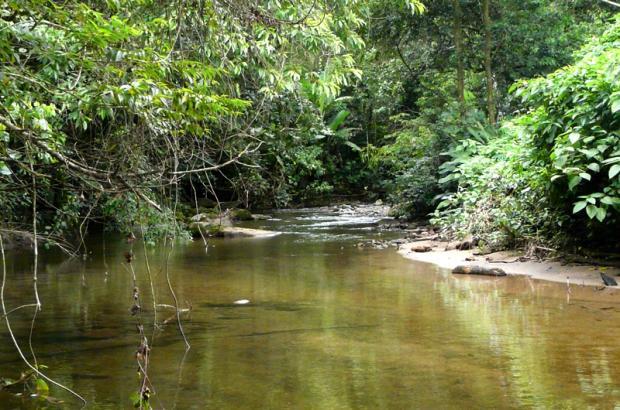 margem-rio-mayra-rosa-ciclovivo-1