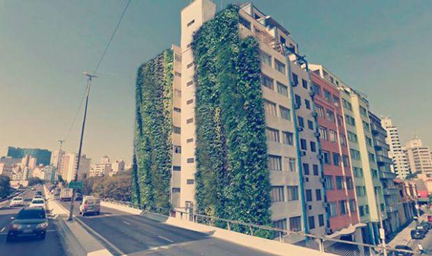 Prefeitura de SP inicia processo para instalação de jardins verticais no Minhocão