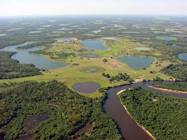 pantanal2