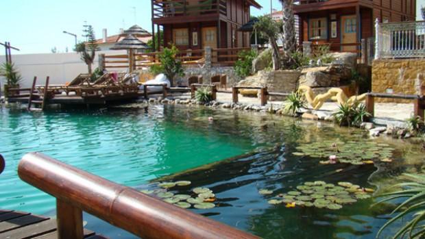 Piscinas biol gicas substituem cloro por plantas - Irritazione da cloro piscina ...