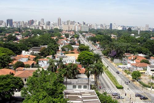 Haddad anuncia projeto que calcula a quantidade de árvores em São Paulo