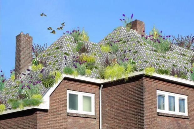 Sistema holandês transforma qualquer telhado em jardim