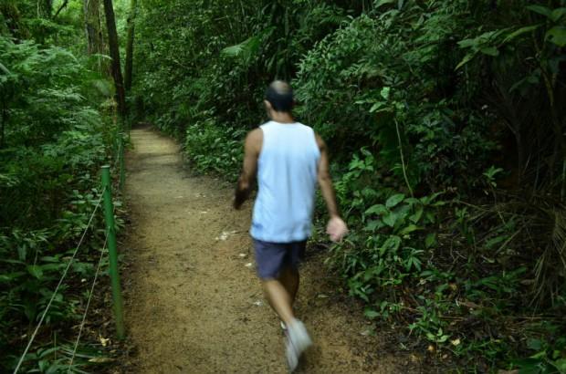 tijuca_trilhas_rj-caminhada