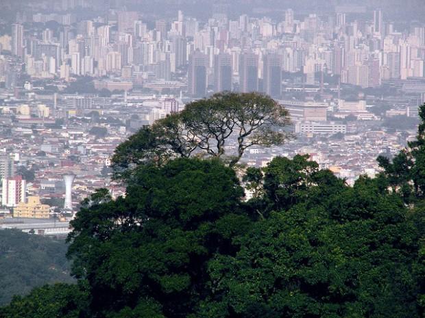 WWF e Secretaria de Meio Ambiente assinam acordo em apoio às Unidades de Conservação