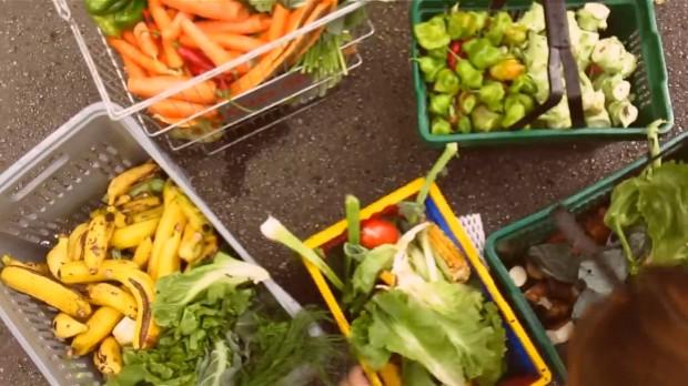 xepa-alimentos-desperdicio
