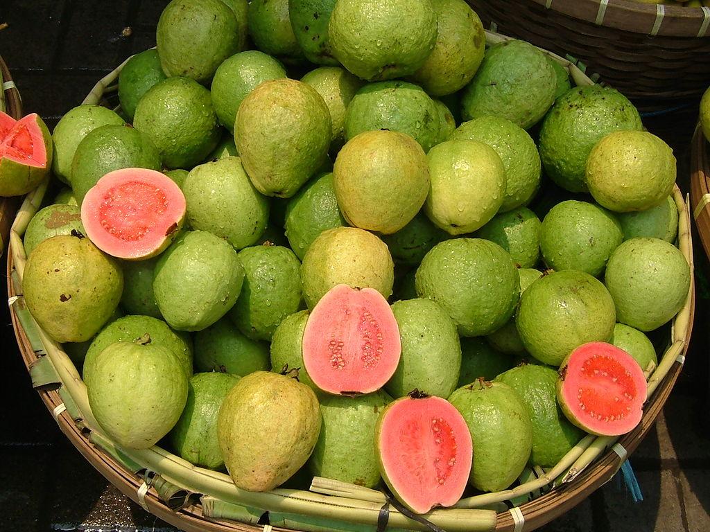 3 frutas do outono que podem ser totalmente aproveitadas