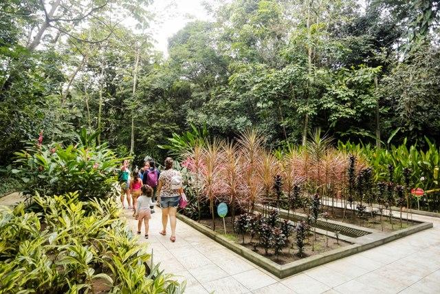 O jardim se consolida como uma opção de lazer na capital pernambucana. | Foto: Andréa Rêgo Barros/ PCR