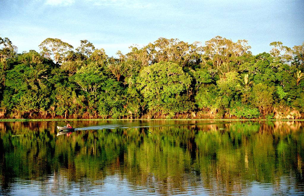 Alemanha anuncia investimentos na preservação da Amazônia