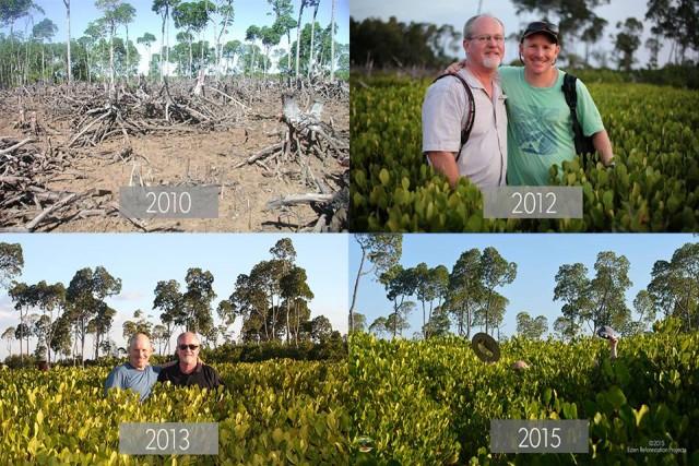 A cada clique, uma árvore é plantada. | Foto: Reprodução/Eden Reforestarion Projects