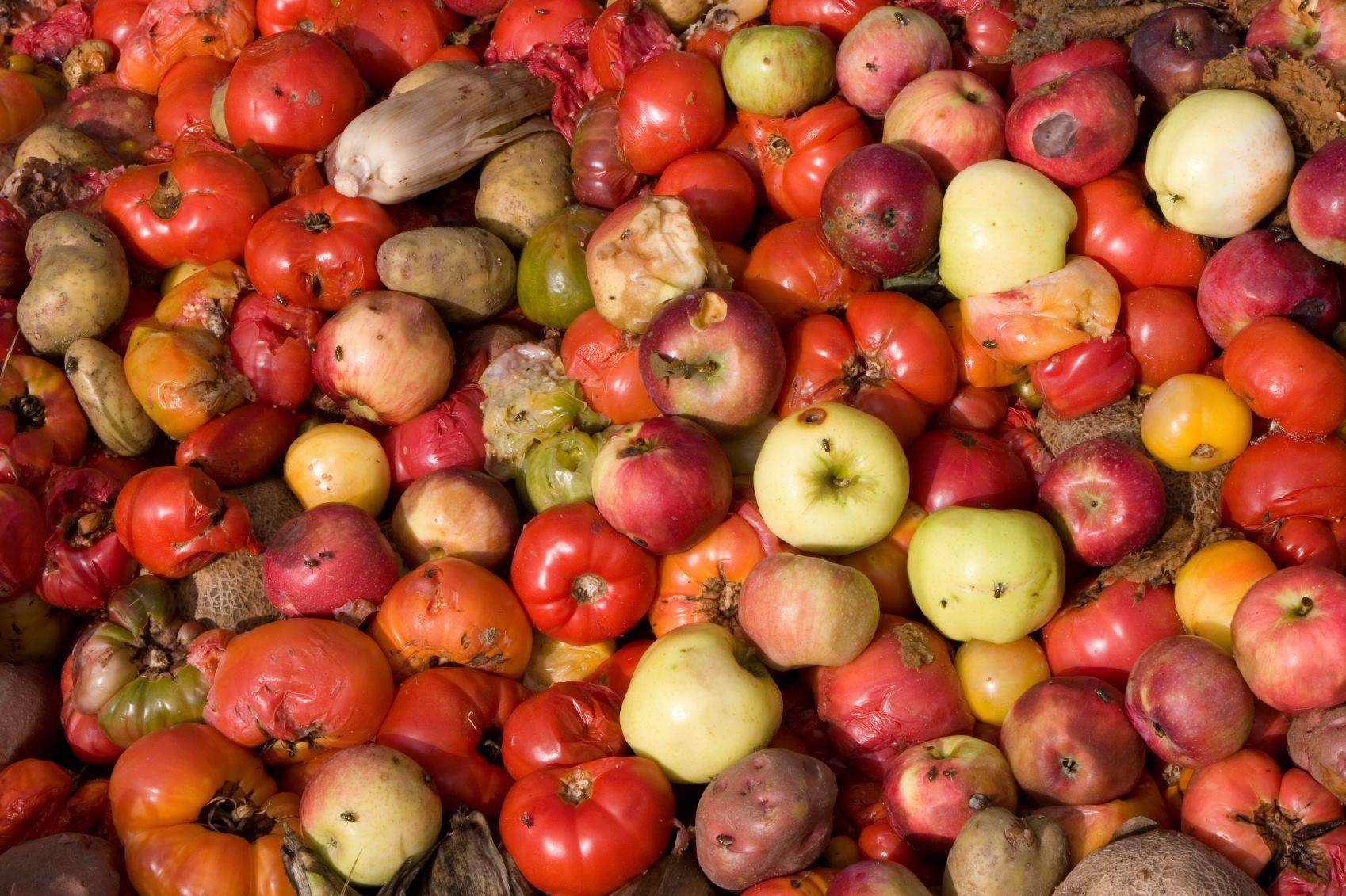 Documentário sobre desperdício de alimentos é exibido gratuitamente em SP
