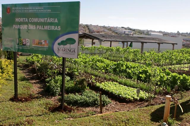 | Foto: Prefeitura de Maringá