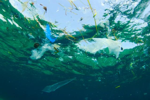 Uma das primeiras conclusões que o time de pesquisadores chegou foi que o plástico está em toda parte. | Foto: iStock by Getty Images
