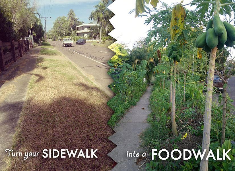 Plantar na rua une o útil ao agradável. | Foto: Food is Free Project
