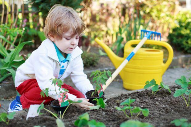 Sesc SP tem oficinas infantis de horta urbana e minhocário