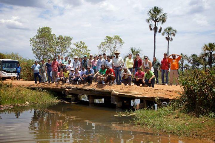 Projeto ambiental plantou 1 milhão de árvores ao redor de rios em 5 anos