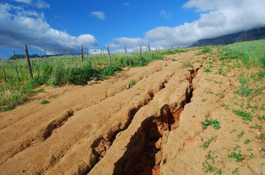 1/3 das áreas produtivas do planeta foram destruídas em apenas 40 anos