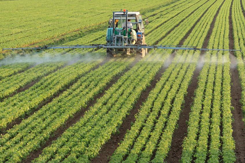 Agropecuária é responsável por 69% das emissões de gases de efeito estufa no Brasil