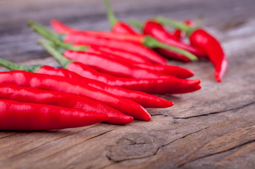 Aprenda a fazer extrato de pimenta que combate pulgões