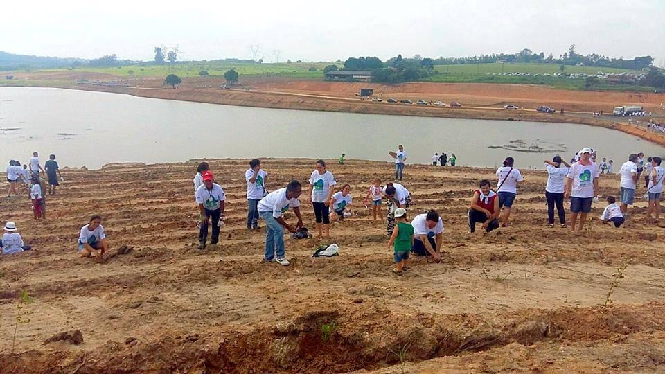 12 mil voluntários participam de mega plantio no interior de SP