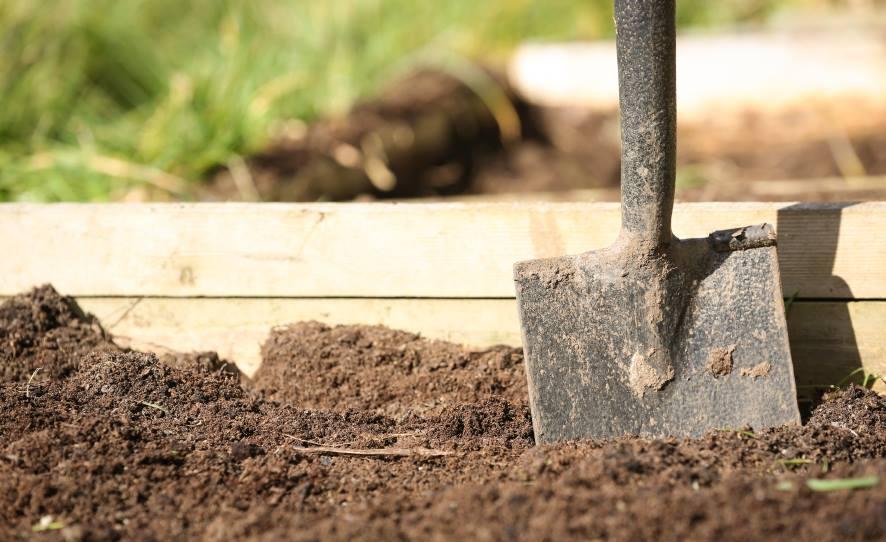 Vídeo mostra como fazer um adubo orgânico e 100% vegetal