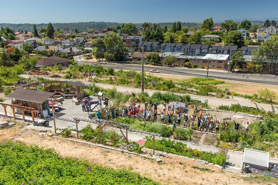 Fazenda urbana fornece alimentos frescos e grátis à comunidade de Seattle