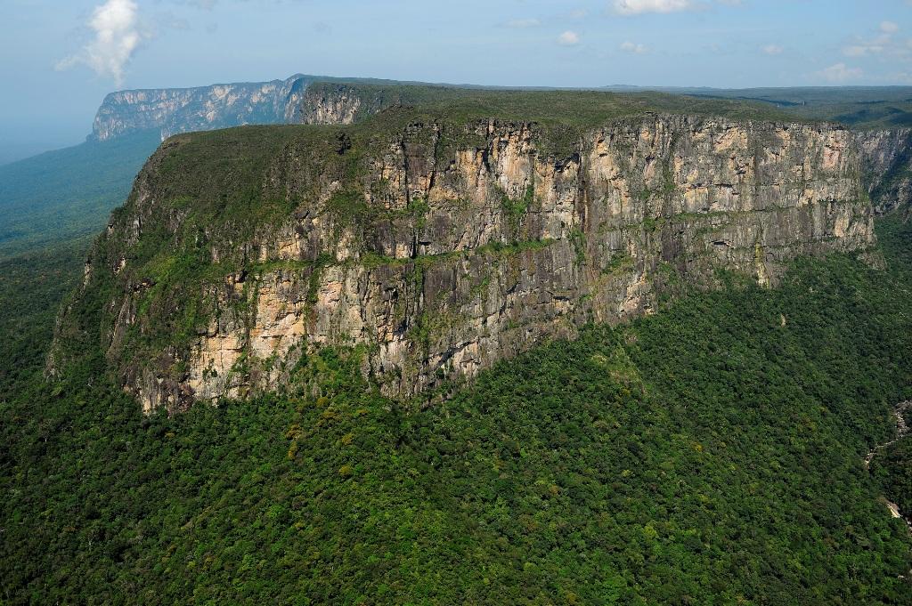 Livro revela espécies vegetais raras encontradas em montanhas da Amazônia