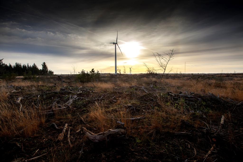 Empresa dinamarquesa de energia eólica inaugura fábrica no Ceará