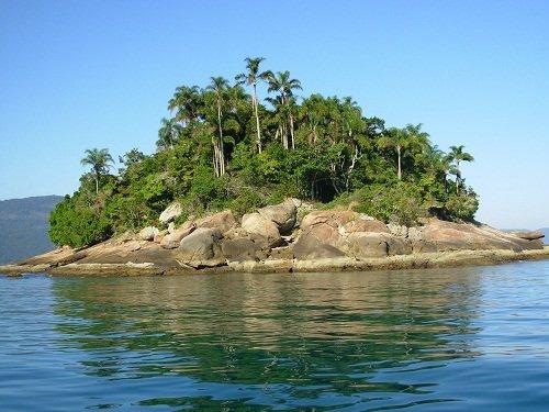 Em 23 hectares, ilha em SP possui mais de 2 mil serpentes