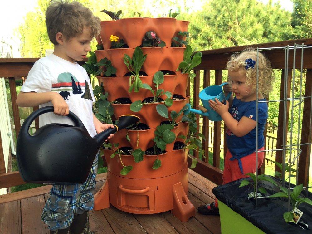 Horta vertical usa restos orgânicos como fertilizante
