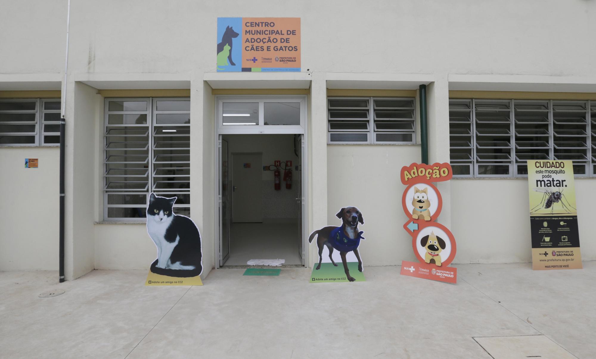 São Paulo ganha núcleo que resgata e promove a adoção de cães e gatos