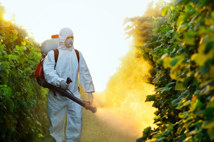 EUA começam a testar resíduos de glifosato em alimentos