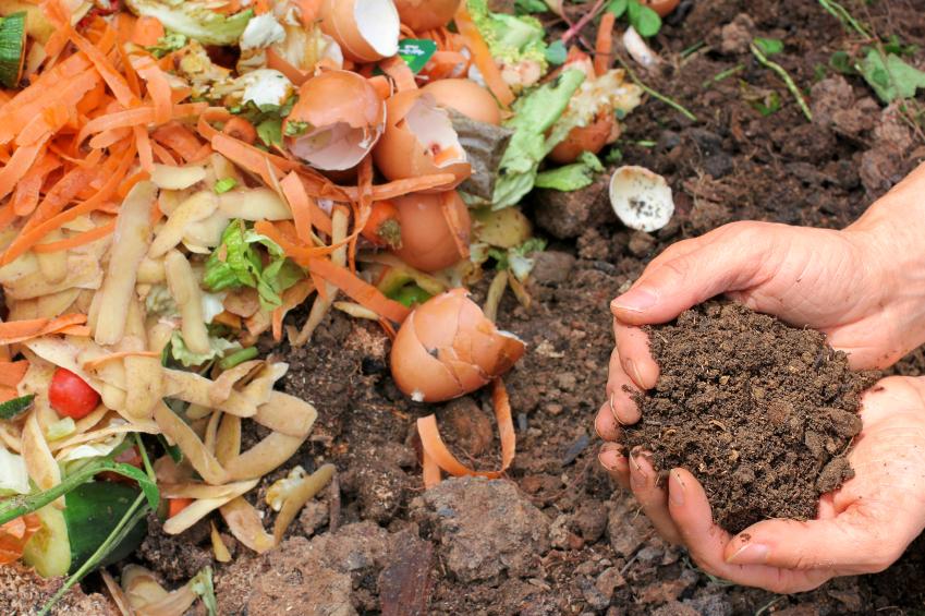 Acordo do MMA estimula compostagem em áreas urbanas