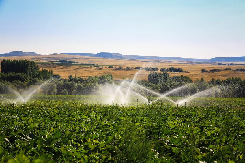 3/4 dos empregos no mundo dependem da água, afirma relatório da ONU