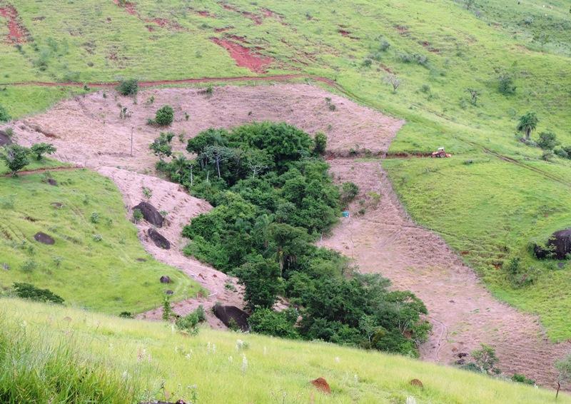 ONG dá início à recuperação de 3 nascentes na bacia do Rio do Peixe (SP)