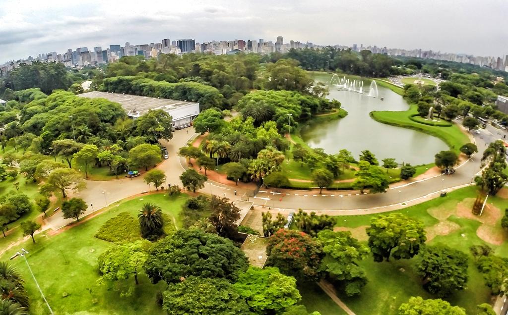 Ferramenta calcula valor econômico das florestas urbanas