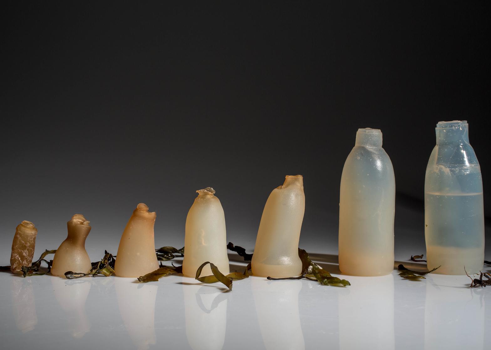 Estudante islandês usa algas para criar garrafa biodegradável